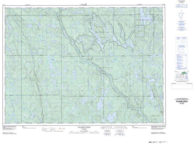 Pilgrim Creek Topographic map 041P02 at 1:50,000 Scale