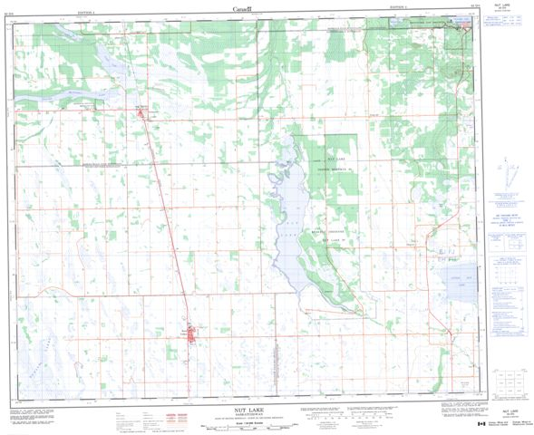 Nut Lake Topographic Paper Map 063D05 at 1:50,000 scale