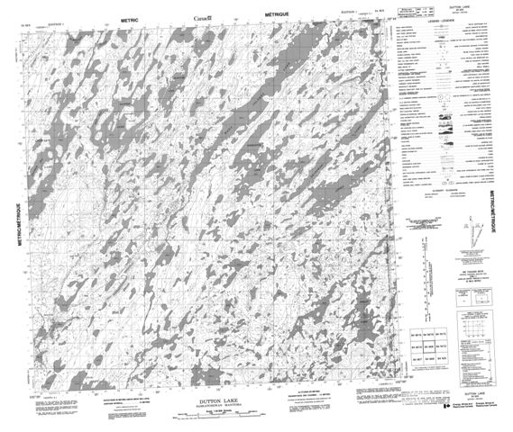 Dutton Lake Topographic Paper Map 064M09 at 1:50,000 scale