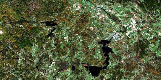 Carleton Place Satellite Map 031F01 at 1:50,000 scale - National Topographic System of Canada (NTS) - Orthophoto